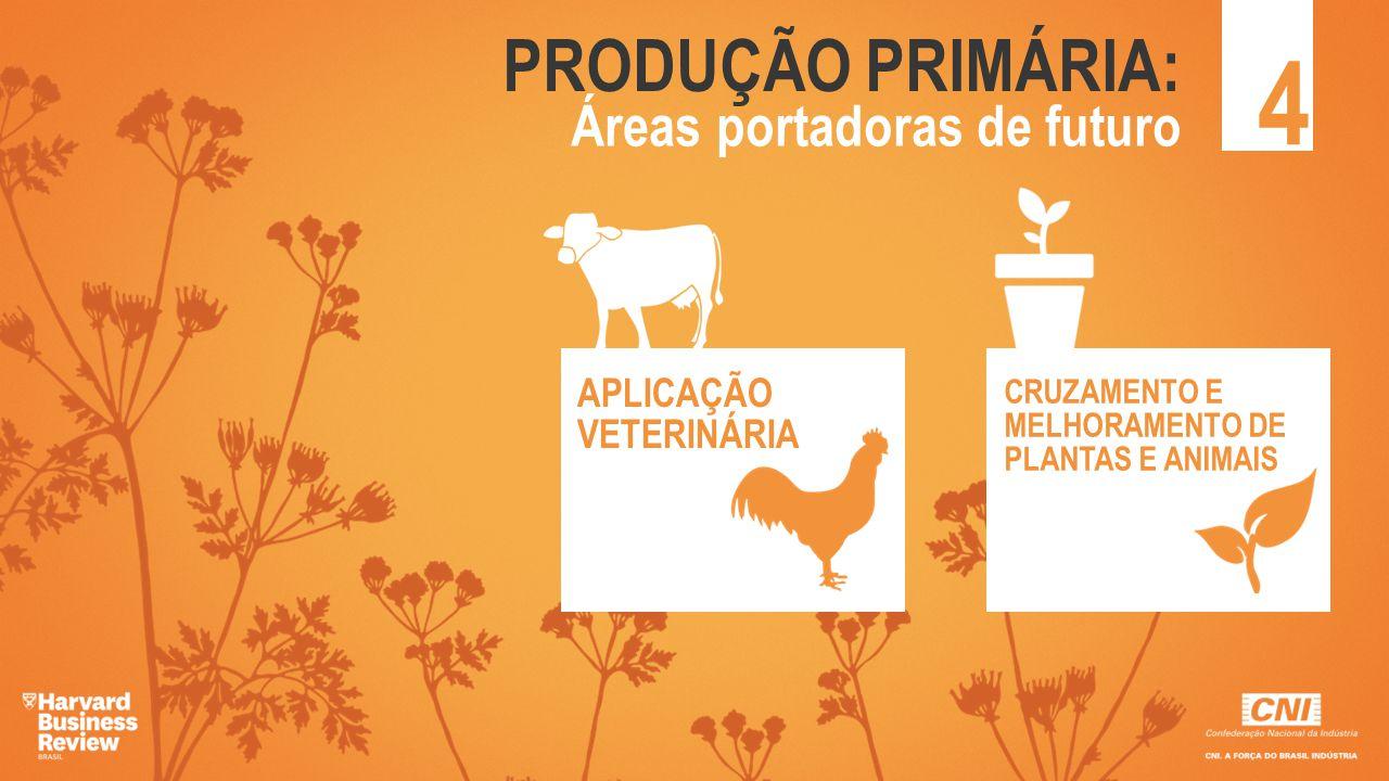 PRODUÇÃO PRIMÁRIA: 4 Áreas portadoras de futuro APLICAÇÃO VETERINÁRIA CRUZAMENTO E MELHORAMENTO DE PLANTAS E ANIMAIS