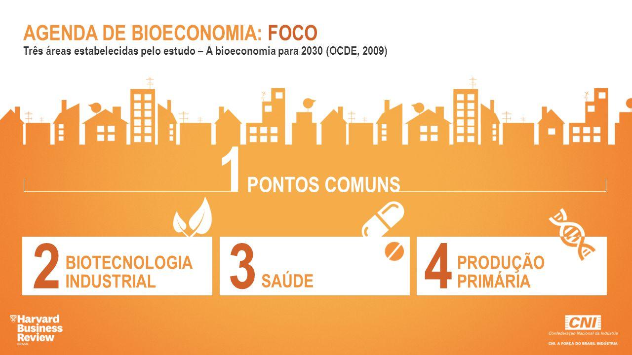 AGENDA DE BIOECONOMIA: FOCO Três áreas estabelecidas pelo estudo – A bioeconomia para 2030 (OCDE, 2009) PONTOS COMUNS 1 BIOTECNOLOGIA INDUSTRIAL 2 SAÚ