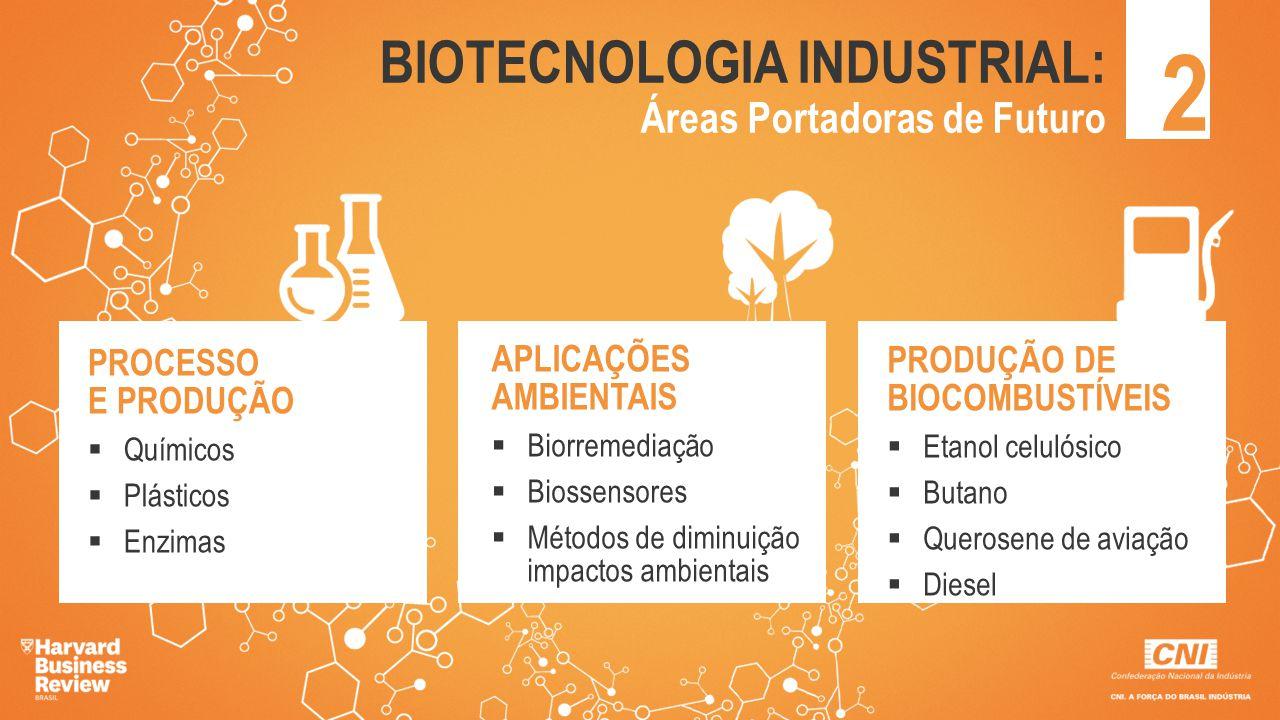2 BIOTECNOLOGIA INDUSTRIAL: Áreas Portadoras de Futuro PROCESSO E PRODUÇÃO  Químicos  Plásticos  Enzimas APLICAÇÕES AMBIENTAIS  Biorremediação  B