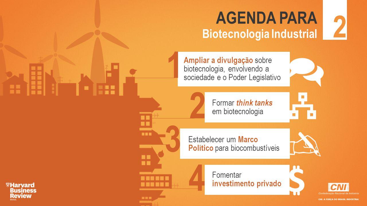 2 AGENDA PARA Biotecnologia Industrial 1 Ampliar a divulgação sobre biotecnologia, envolvendo a sociedade e o Poder Legislativo 2 Formar think tanks e