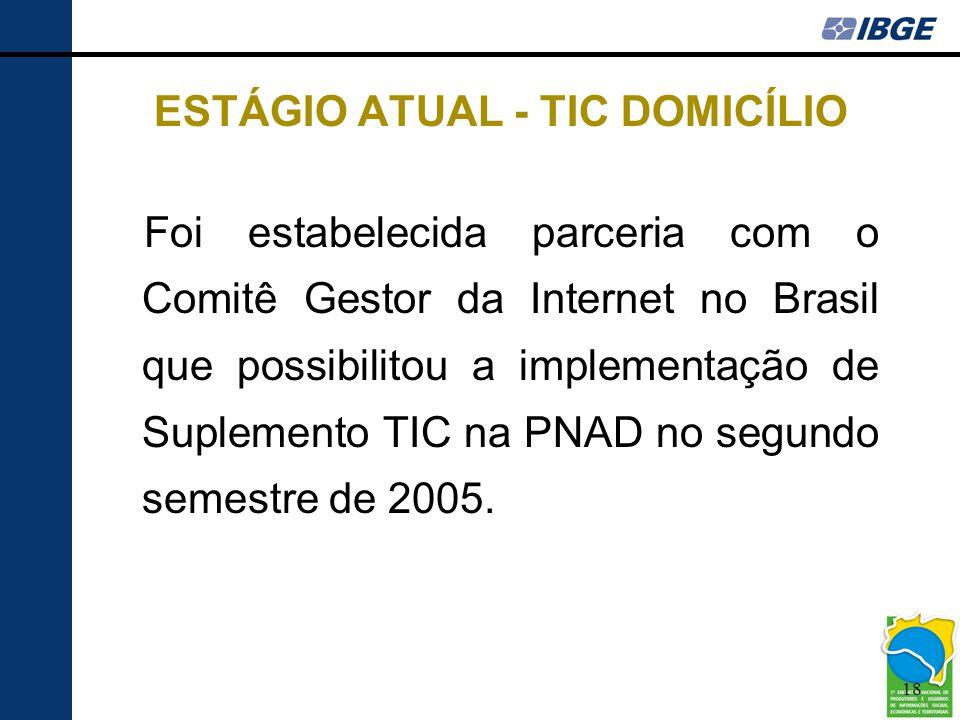 18 ESTÁGIO ATUAL - TIC DOMICÍLIO Foi estabelecida parceria com o Comitê Gestor da Internet no Brasil que possibilitou a implementação de Suplemento TI