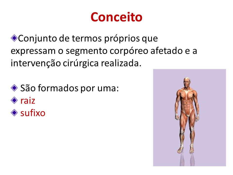 Conceito Conjunto de termos próprios que expressam o segmento corpóreo afetado e a intervenção cirúrgica realizada. São formados por uma: raiz sufixo