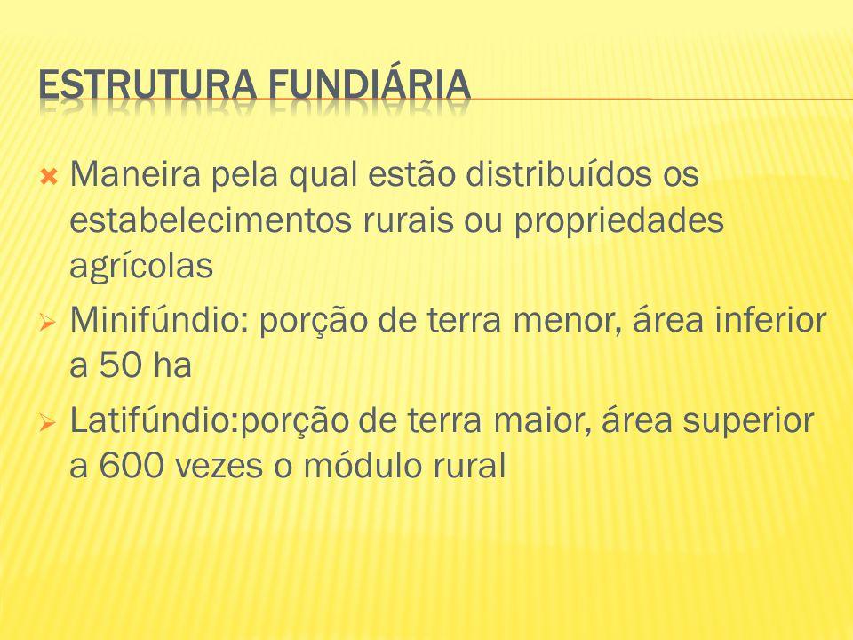 Maneira pela qual estão distribuídos os estabelecimentos rurais ou propriedades agrícolas  Minifúndio: porção de terra menor, área inferior a 50 ha
