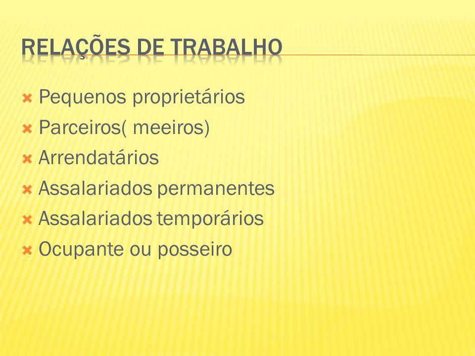  Pequenos proprietários  Parceiros( meeiros)  Arrendatários  Assalariados permanentes  Assalariados temporários  Ocupante ou posseiro