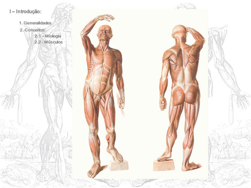 I – Introdução: 1. Generalidades 2. Conceitos: 2. Conceitos: 2.1 – Miologia 2.2 - Músculos