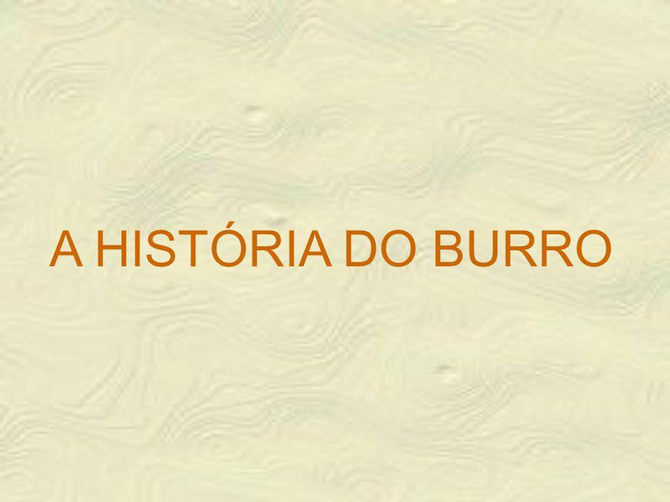 A HISTÓRIA DO BURRO