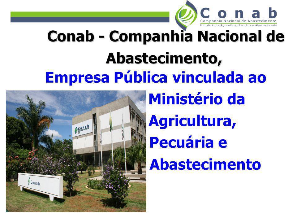 Missão da Conab: Contribuir para a regularidade do abastecimento e garantia de renda ao produtor rural, participando da formulação e execução das políticas agrícolas e de abastecimento.