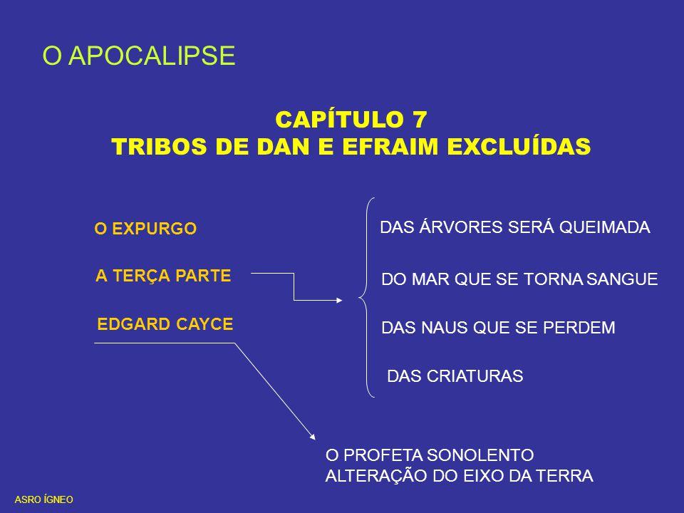 O APOCALIPSE CAPÍTULO 7 TRIBOS DE DAN E EFRAIM EXCLUÍDAS O EXPURGO A TERÇA PARTE DAS ÁRVORES SERÁ QUEIMADA DO MAR QUE SE TORNA SANGUE DAS NAUS QUE SE