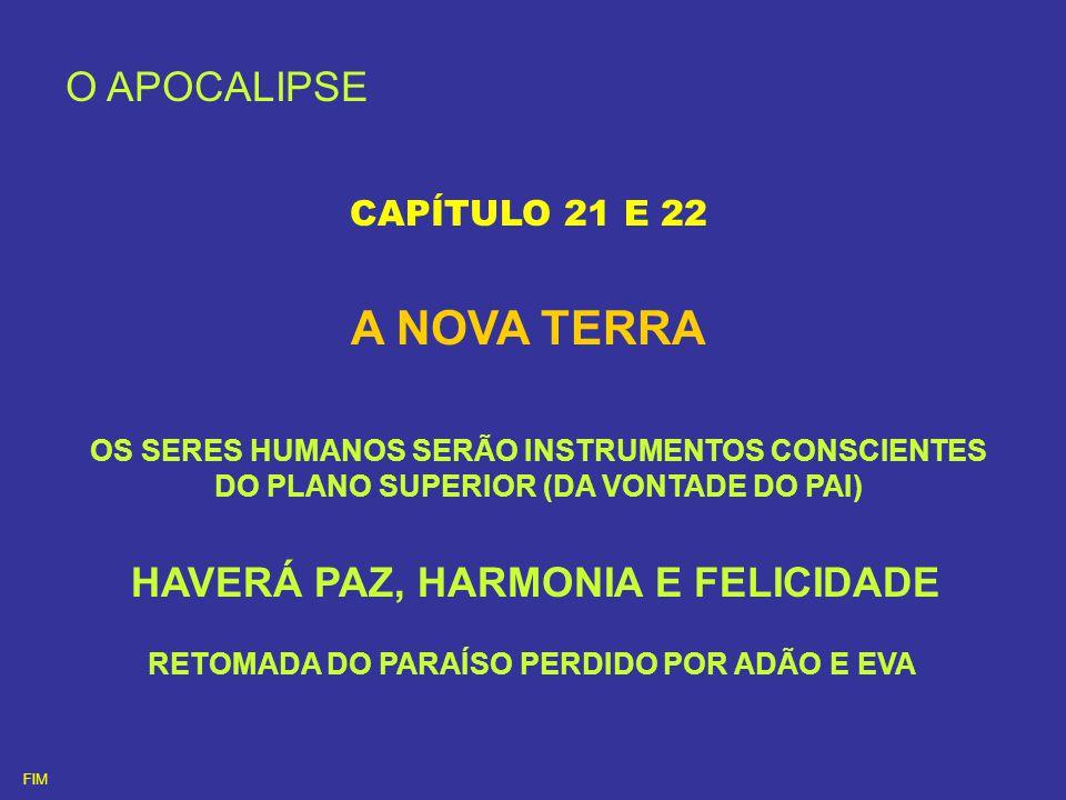 O APOCALIPSE CAPÍTULO 21 E 22 A NOVA TERRA OS SERES HUMANOS SERÃO INSTRUMENTOS CONSCIENTES DO PLANO SUPERIOR (DA VONTADE DO PAI) HAVERÁ PAZ, HARMONIA