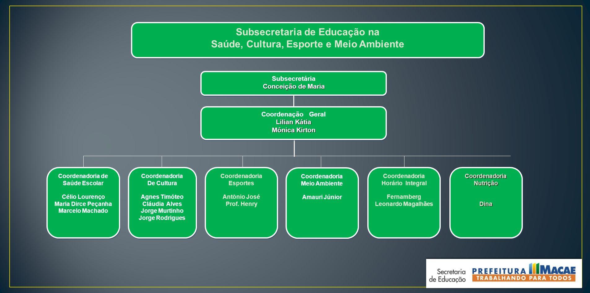 Subsecretaria de Educação na Saúde, Cultura, Esporte e Meio Ambiente Subsecretaria de Educação na Saúde, Cultura, Esporte e Meio Ambiente Coordenadori