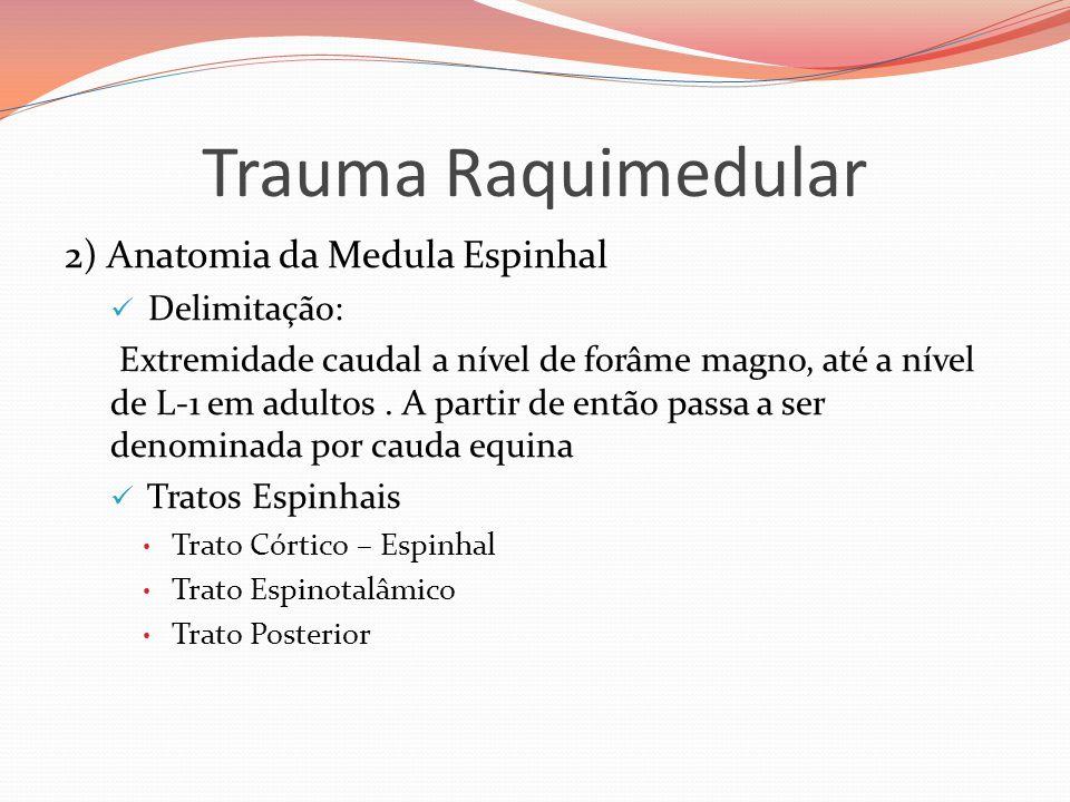 Trauma Raquimedular 2) Anatomia da Medula Espinhal  Delimitação: Extremidade caudal a nível de forâme magno, até a nível de L-1 em adultos. A partir