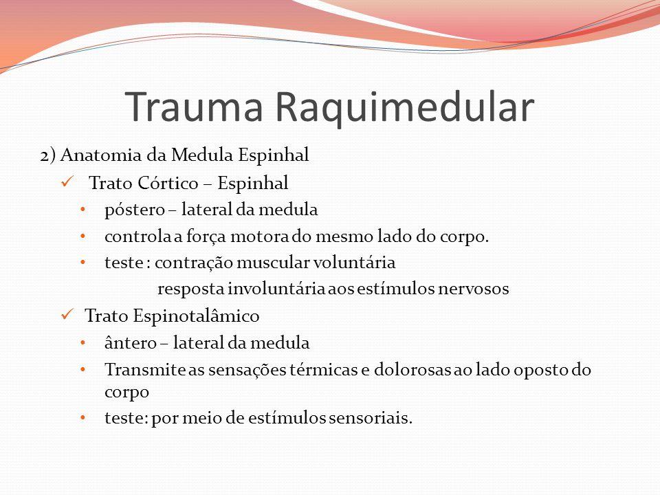 Trauma Raquimedular 2) Anatomia da Medula Espinhal  Trato Córtico – Espinhal • póstero – lateral da medula • controla a força motora do mesmo lado do corpo.