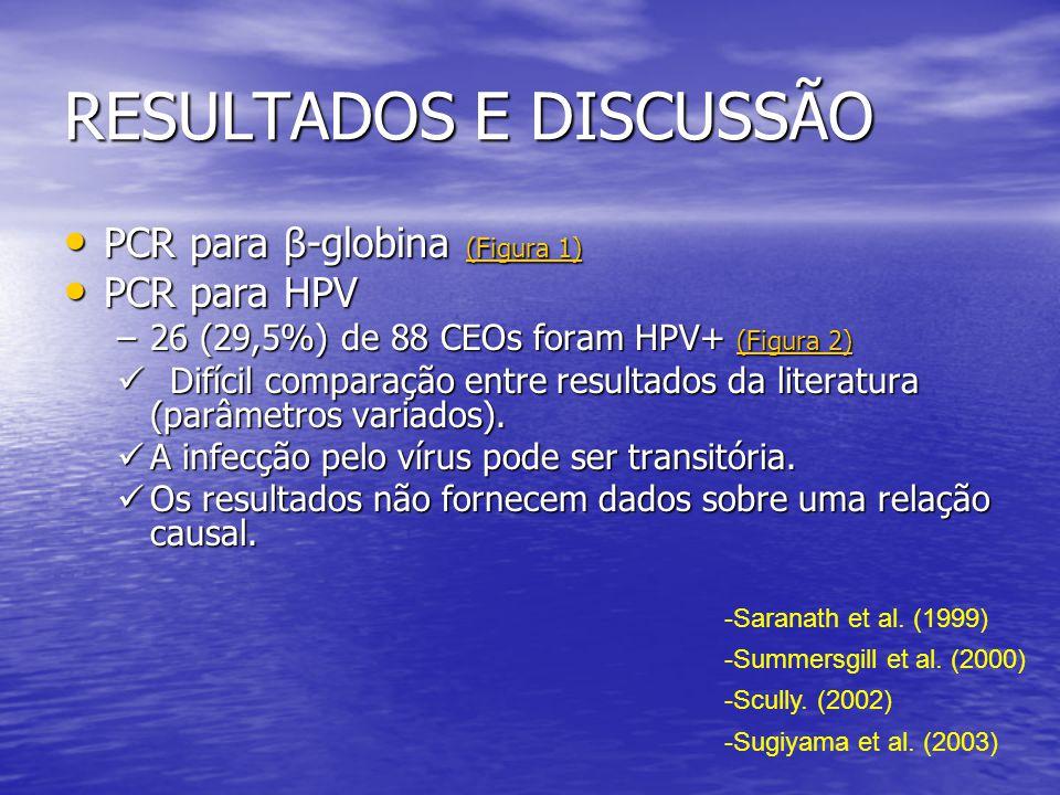 RESULTADOS E DISCUSSÃO • Não houve associação entre o HPV e o sexo dos pacientes.