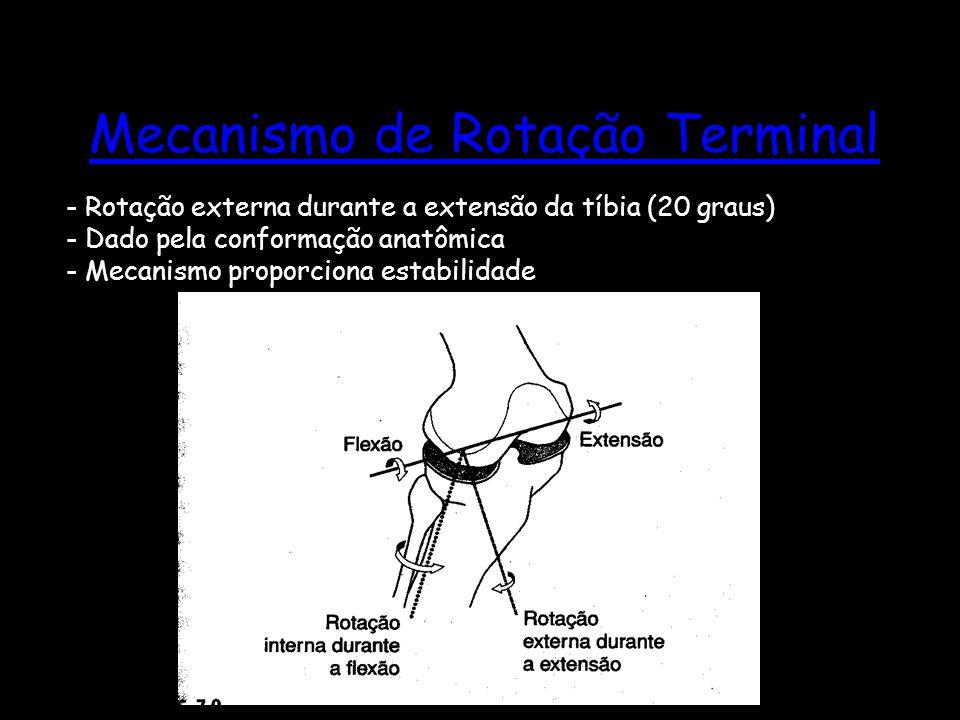 Mecanismo de Rotação Terminal - Rotação externa durante a extensão da tíbia (20 graus) - Dado pela conformação anatômica - Mecanismo proporciona estab