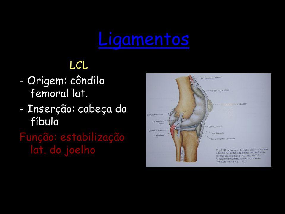 Ligamentos LCL - Origem: côndilo femoral lat. - Inserção: cabeça da fíbula Função: estabilização lat. do joelho