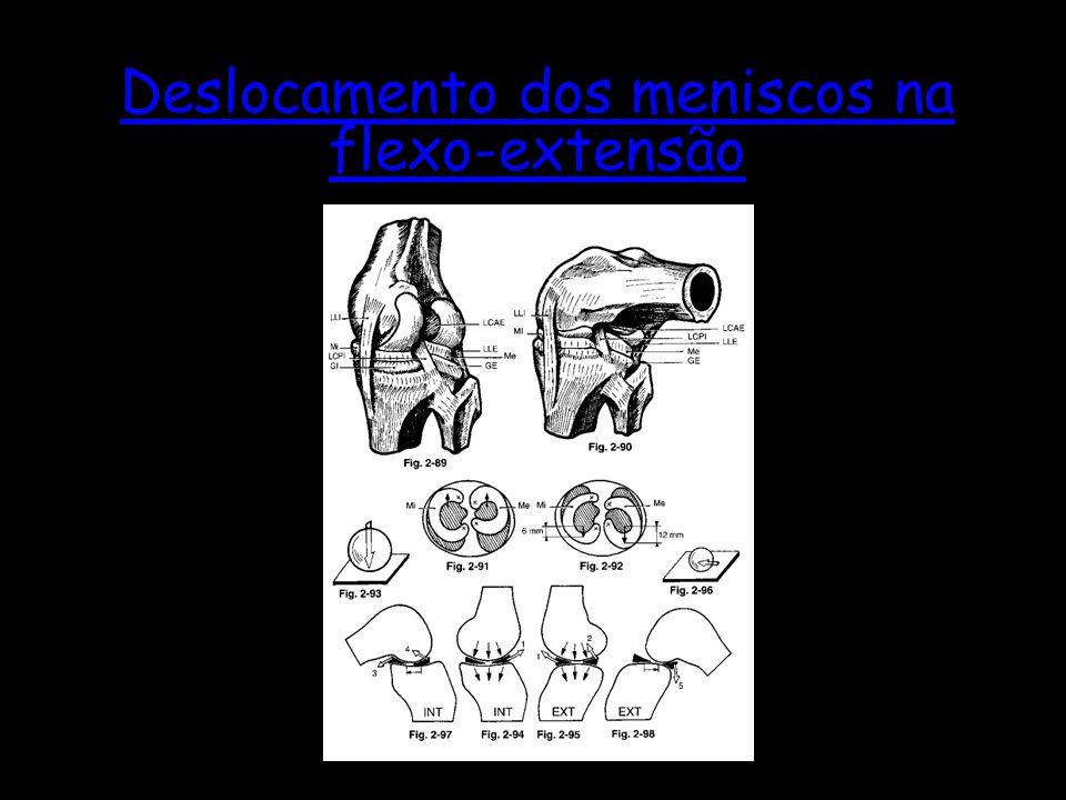 Deslocamento dos meniscos na flexo-extensão