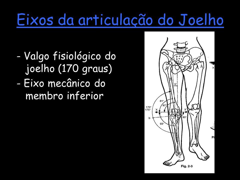 Eixos da articulação do Joelho - Valgo fisiológico do joelho (170 graus) - Eixo mecânico do membro inferior