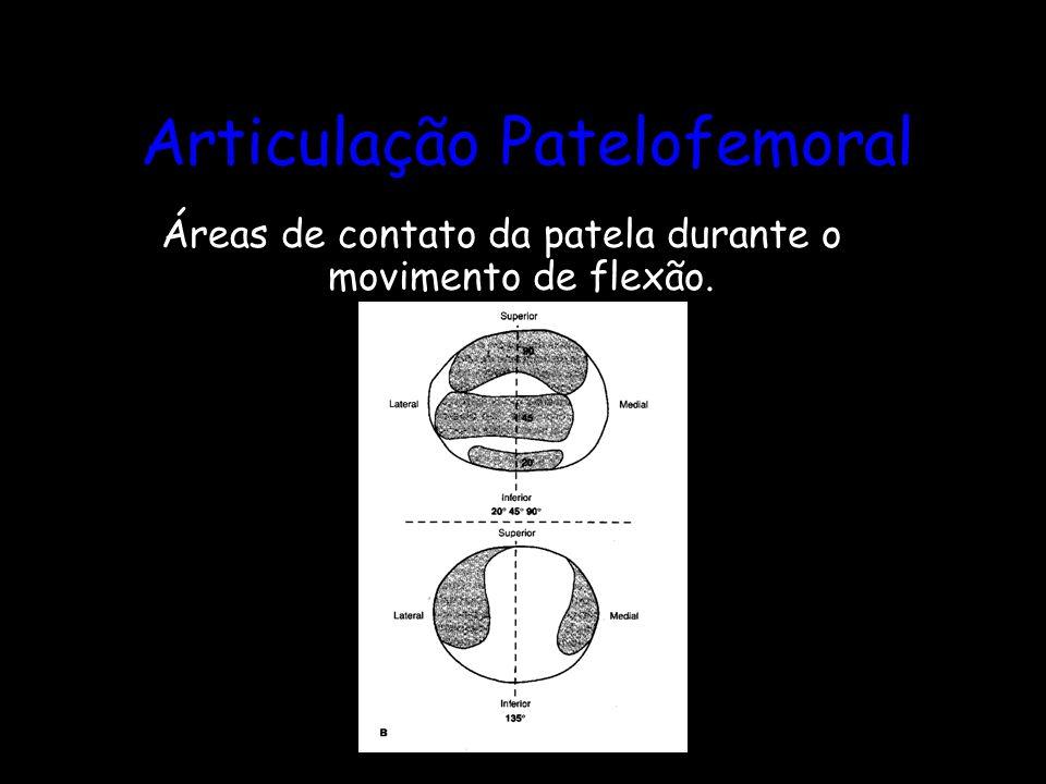 Articulação Patelofemoral Áreas de contato da patela durante o movimento de flexão.