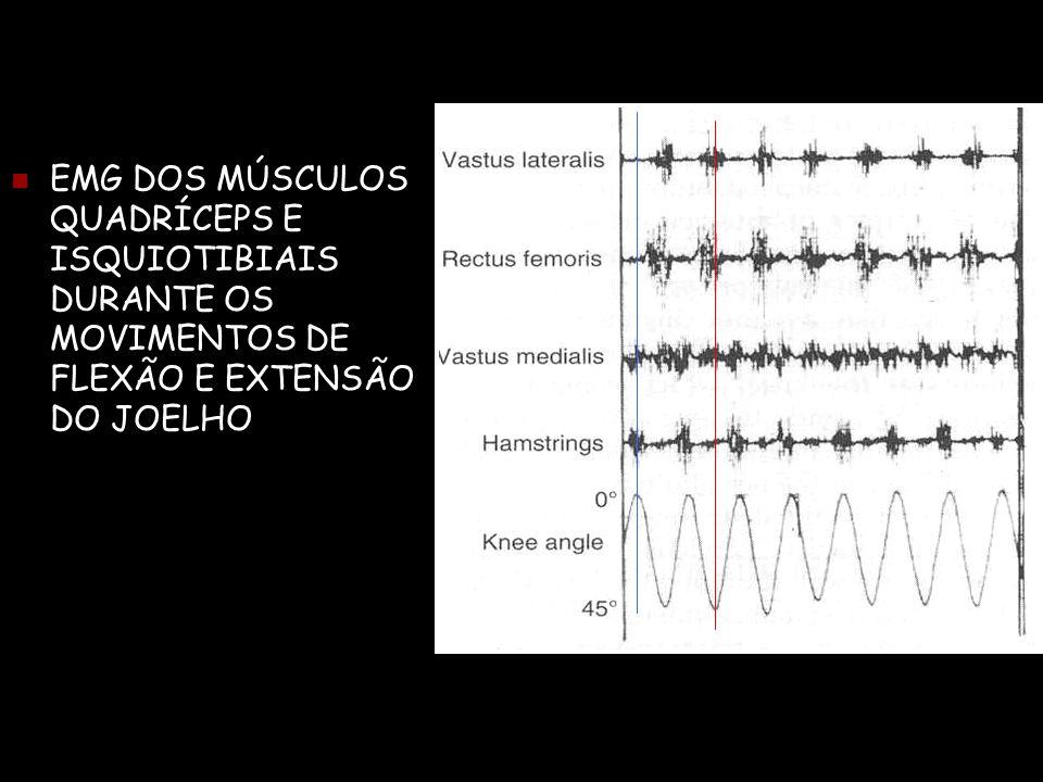  EMG DOS MÚSCULOS QUADRÍCEPS E ISQUIOTIBIAIS DURANTE OS MOVIMENTOS DE FLEXÃO E EXTENSÃO DO JOELHO