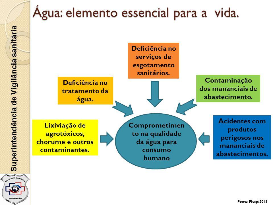 Superintendência de Vigilância sanitária Água: elemento essencial para a vida. Deficiência no tratamento da água. Comprometimen to na qualidade da águ