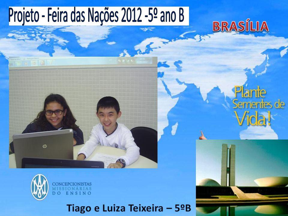 Linda Brasília.DF,Brasília capital que veio do cerrado, bioma quente natural.