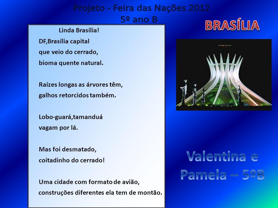 Linda Brasília! DF,Brasília capital que veio do cerrado, bioma quente natural. Raízes longas as árvores têm, galhos retorcidos também. Lobo-guará,tama