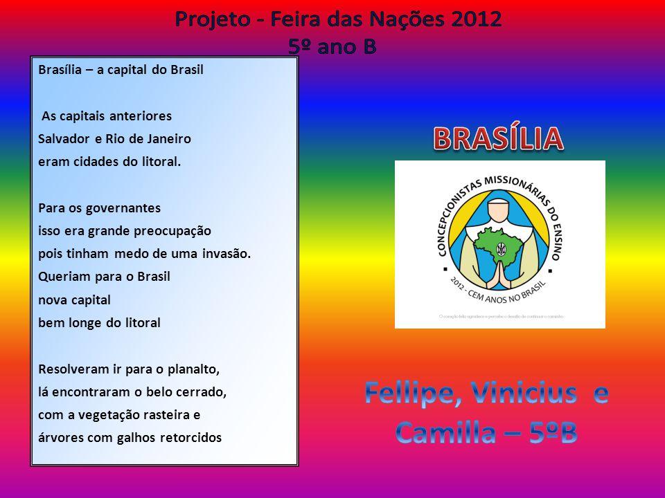 Brasília – a capital do Brasil As capitais anteriores Salvador e Rio de Janeiro eram cidades do litoral. Para os governantes isso era grande preocupaç