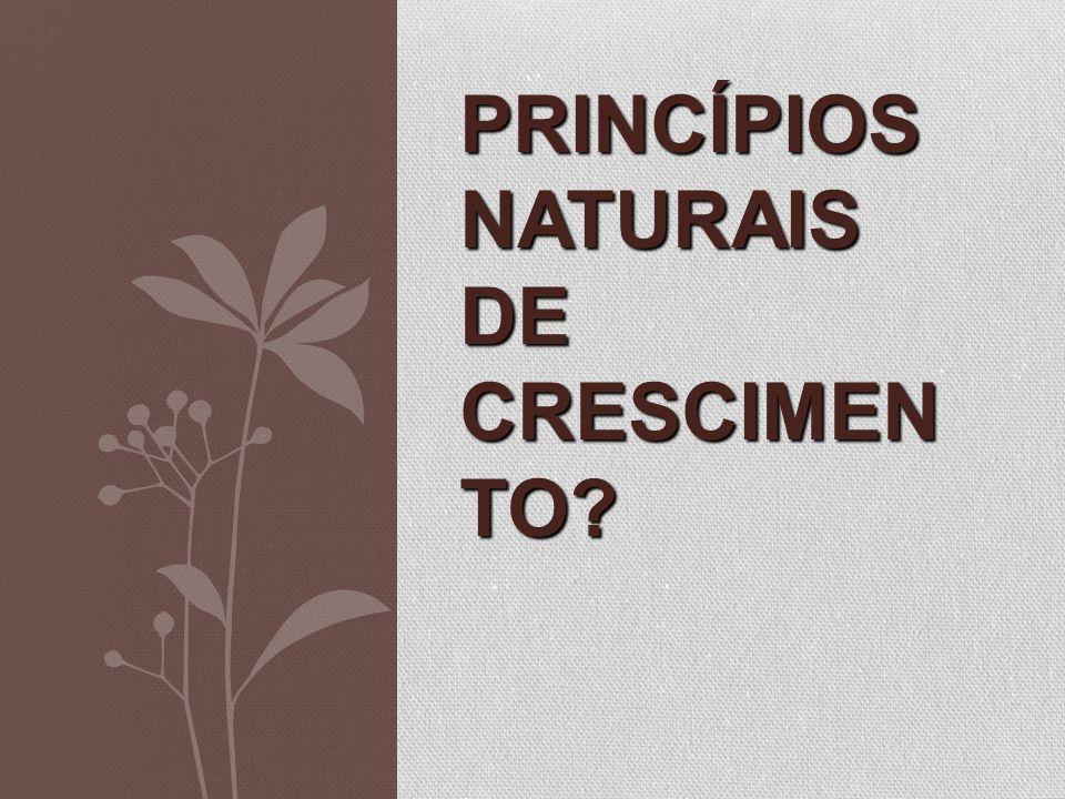 PRINCÍPIOS NATURAIS DE CRESCIMEN TO?