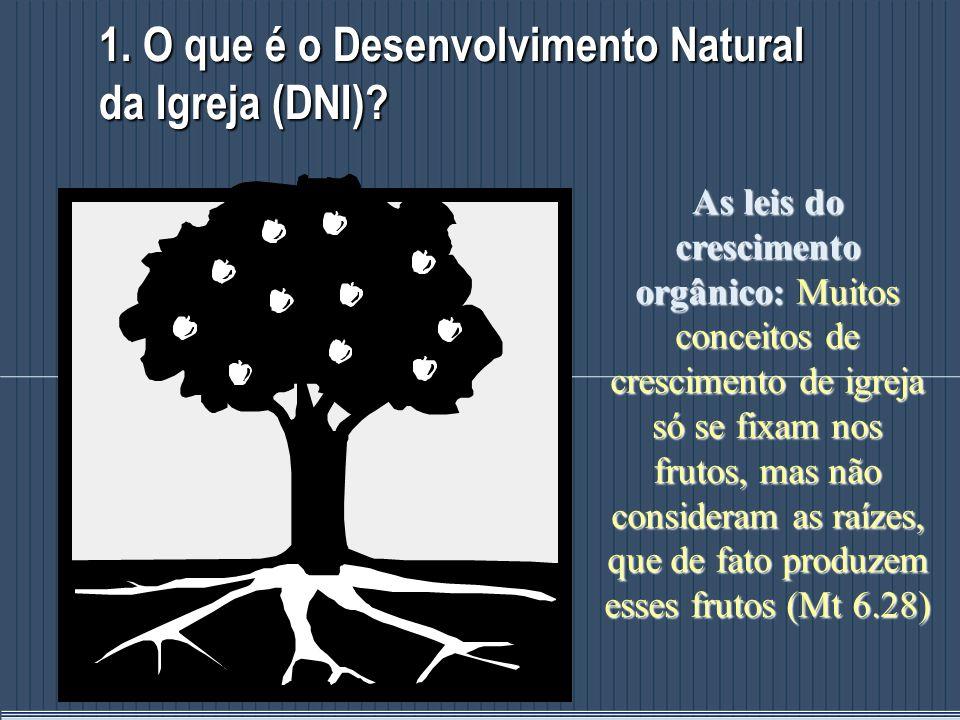 1. O que é o Desenvolvimento Natural da Igreja (DNI)? As leis do crescimento orgânico: Muitos conceitos de crescimento de igreja só se fixam nos fruto