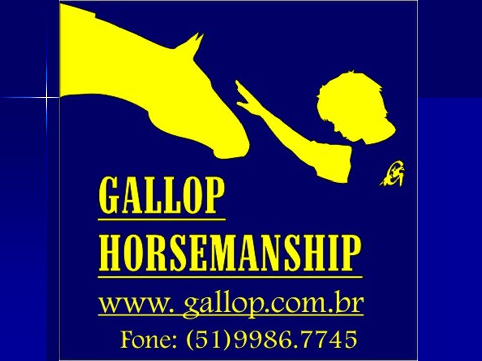 Arte e ciência de trabalhar com o cavalo de acordo com sua natureza. NATURAL HORSEMANSHIP