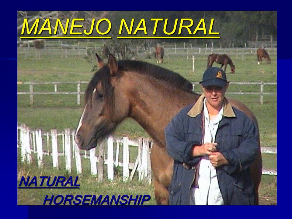 MANEJO NATURAL NATURAL HORSEMANSHIP HORSEMANSHIP