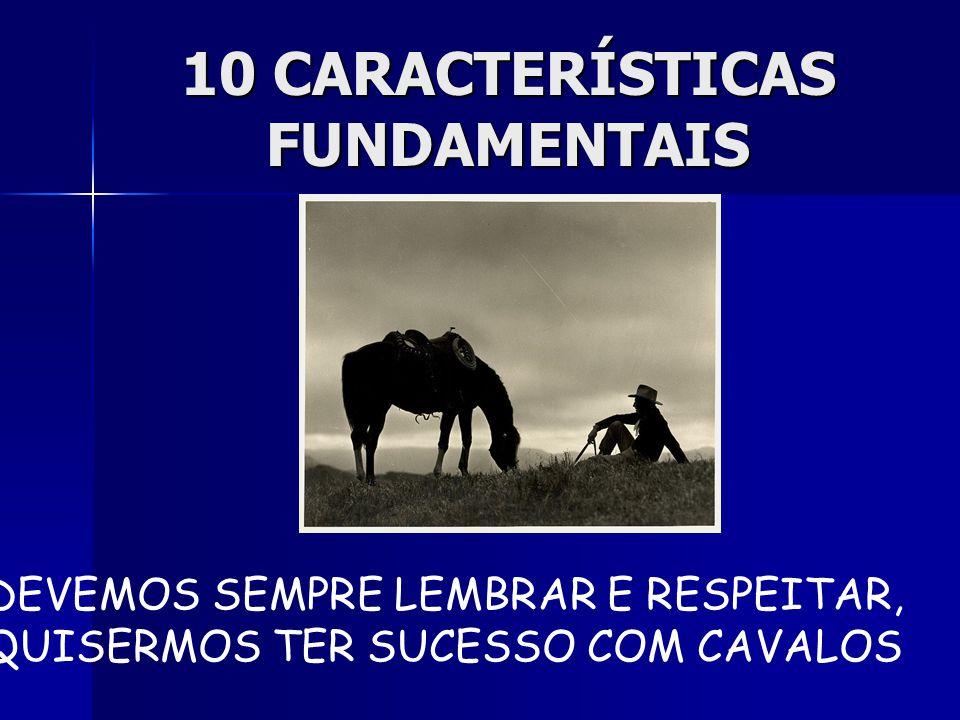 10 CARACTERÍSTICAS FUNDAMENTAIS,,,QUE DEVEMOS SEMPRE LEMBRAR E RESPEITAR, SE QUISERMOS TER SUCESSO COM CAVALOS