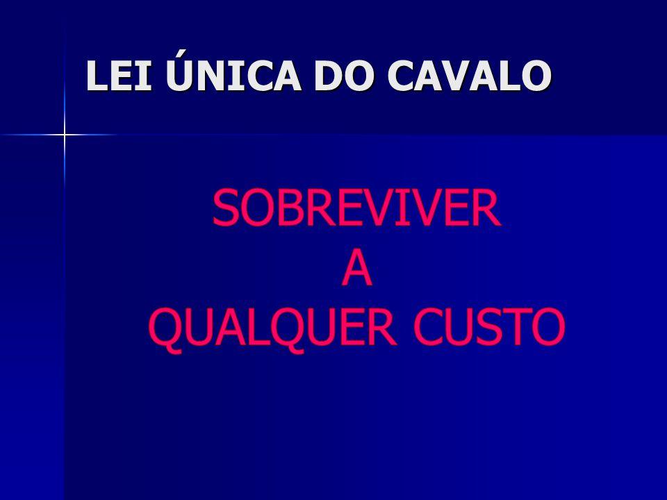 LEI ÚNICA DO CAVALO