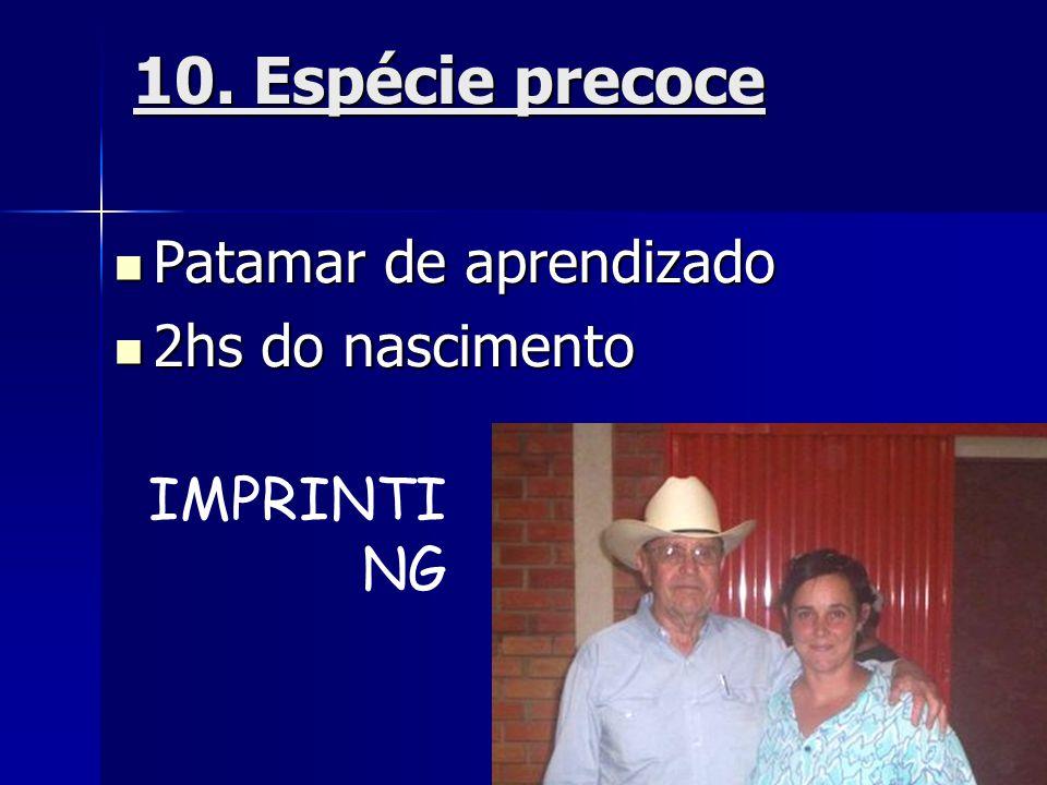 10. Espécie precoce  Patamar de aprendizado  2hs do nascimento IMPRINTI NG
