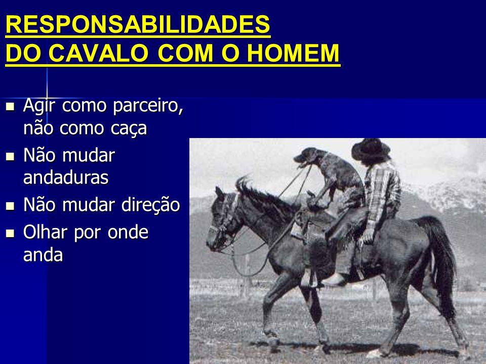 RESPONSABILIDADES DO CAVALO COM O HOMEM  Agir como parceiro, não como caça  Não mudar andaduras  Não mudar direção  Olhar por onde anda