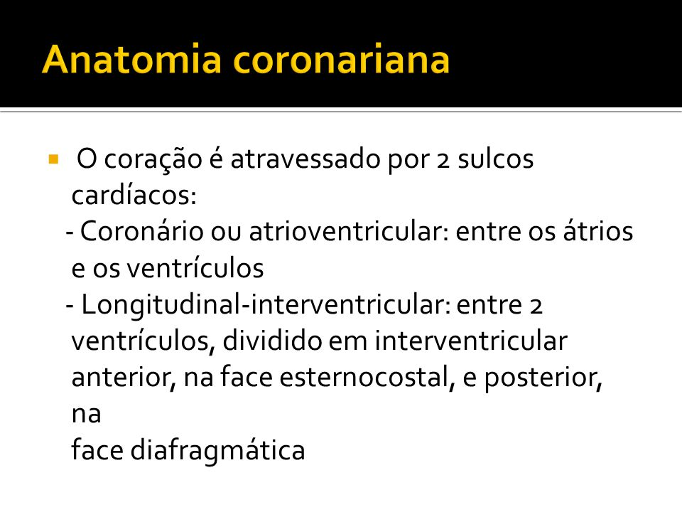  O coração é atravessado por 2 sulcos cardíacos: - Coronário ou atrioventricular: entre os átrios e os ventrículos - Longitudinal-interventricular: entre 2 ventrículos, dividido em interventricular anterior, na face esternocostal, e posterior, na face diafragmática