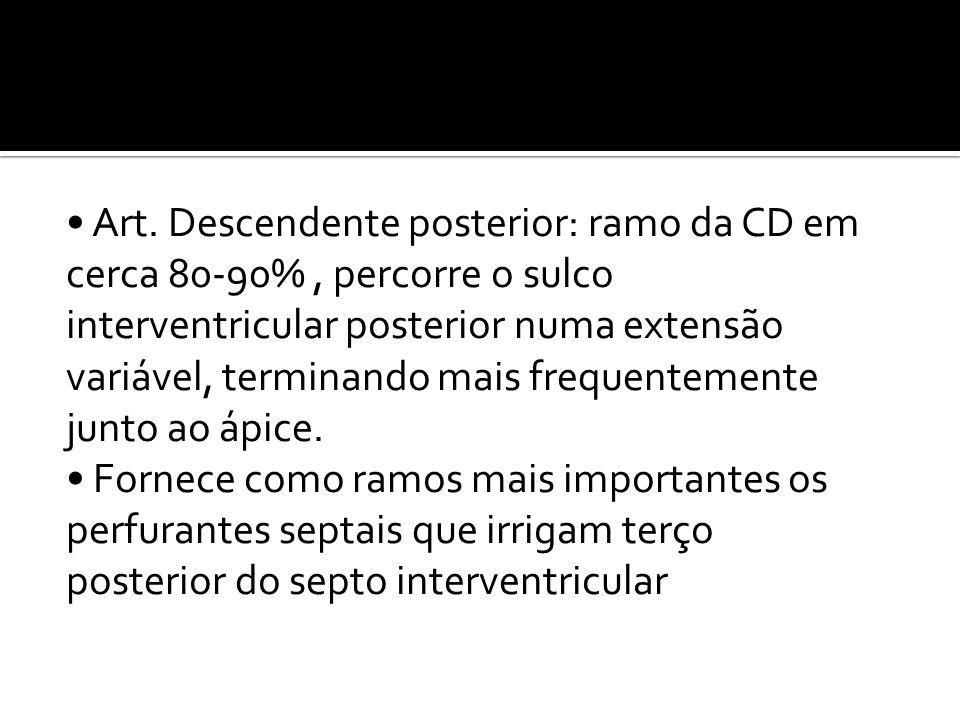 • Art. Descendente posterior: ramo da CD em cerca 80-90%, percorre o sulco interventricular posterior numa extensão variável, terminando mais frequent