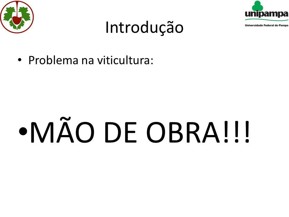 Introdução • Problema na viticultura: • MÃO DE OBRA!!!