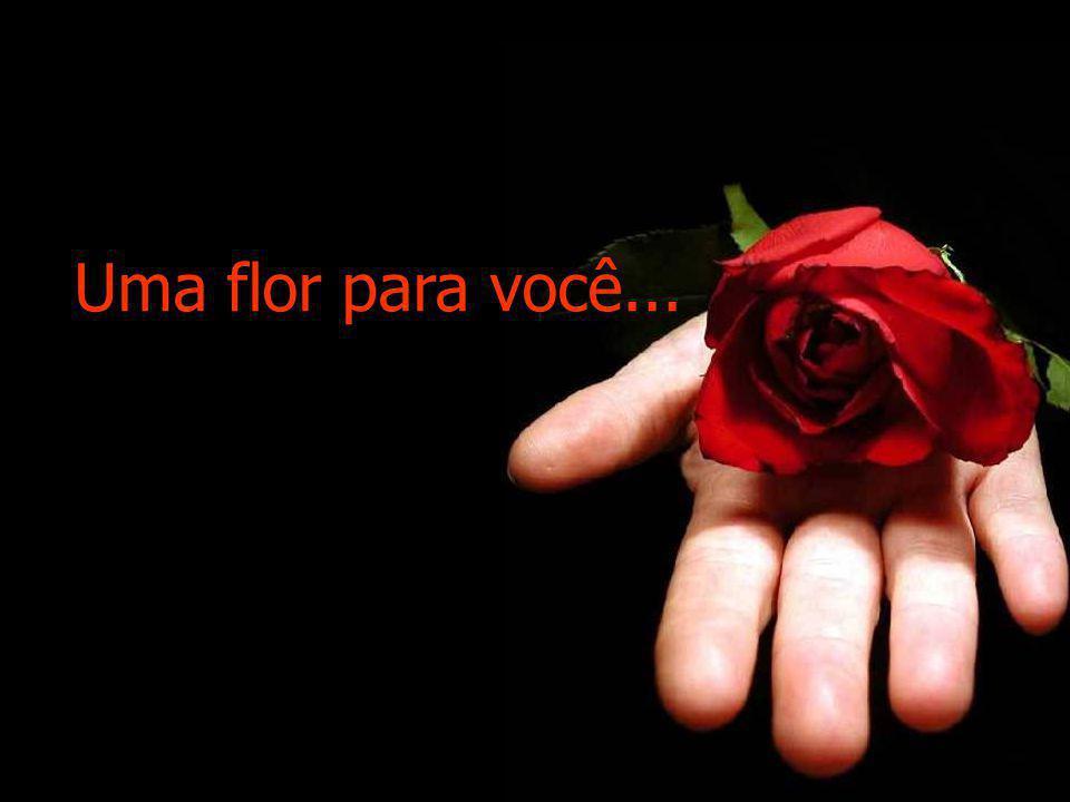 OFEREÇO UMA ROSA A quem me deu perfume, A quem me deu sentido, A quem só me fez bem Aqueles que sorriram comigo, Aqueles que comigo partilharam lágrim