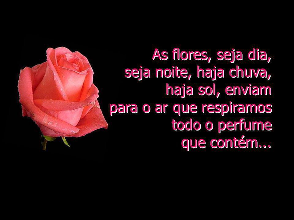 As flores, seja dia, seja noite, haja chuva, haja sol, enviam para o ar que respiramos todo o perfume que contém...