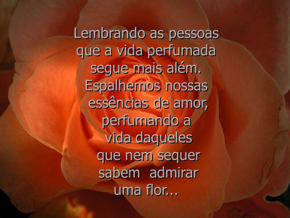 As flores, seja dia, seja noite, haja chuva, haja sol, enviam para o ar que respiramos todo o perfume que contém... As flores, seja dia, seja noite, h
