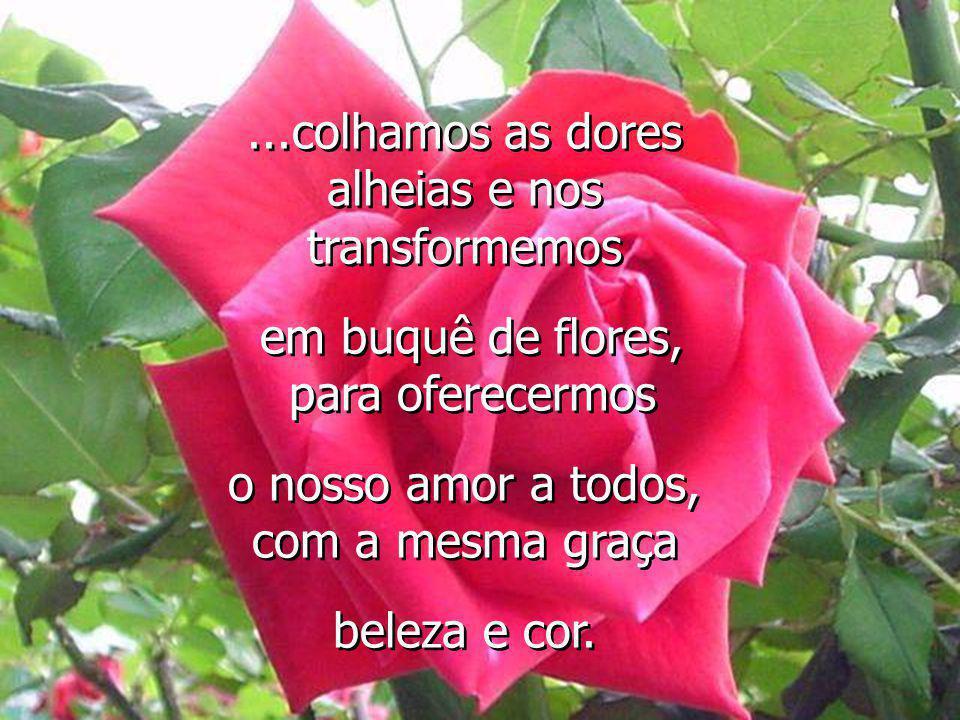 ...colhamos as dores alheias e nos transformemos em buquê de flores, para oferecermos o nosso amor a todos, com a mesma graça beleza e cor....colhamos as dores alheias e nos transformemos em buquê de flores, para oferecermos o nosso amor a todos, com a mesma graça beleza e cor.