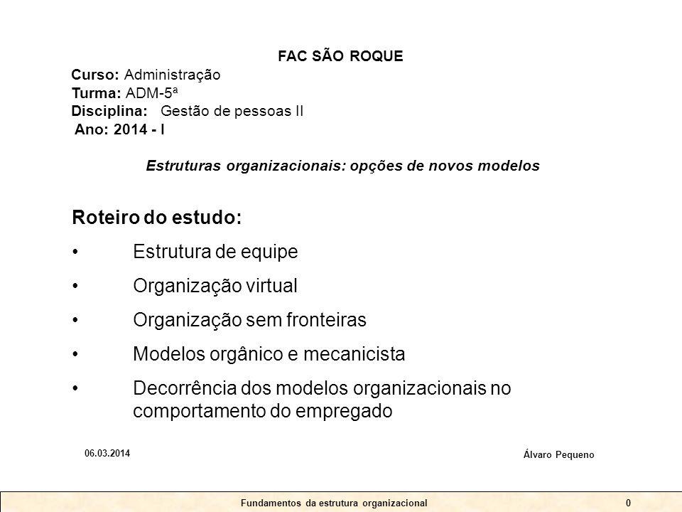 Fundamentos da estrutura organizacional0 Roteiro do estudo: •Estrutura de equipe •Organização virtual •Organização sem fronteiras •Modelos orgânico e