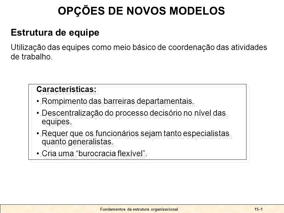 Fundamentos da estrutura organizacional15–1 Características: •Rompimento das barreiras departamentais. •Descentralização do processo decisório no níve