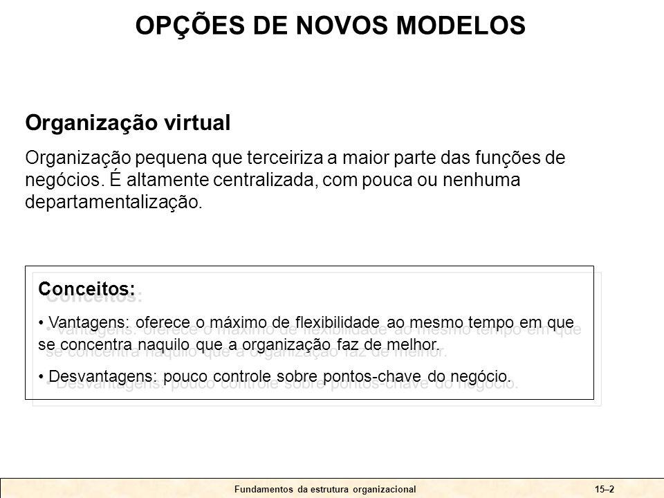 Fundamentos da estrutura organizacional15–3 OPÇÕES DE NOVOS MODELOS Uma organização virtual