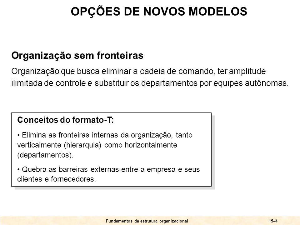 Fundamentos da estrutura organizacional15–4 Conceitos do formato-T: • Elimina as fronteiras internas da organização, tanto verticalmente (hierarquia)