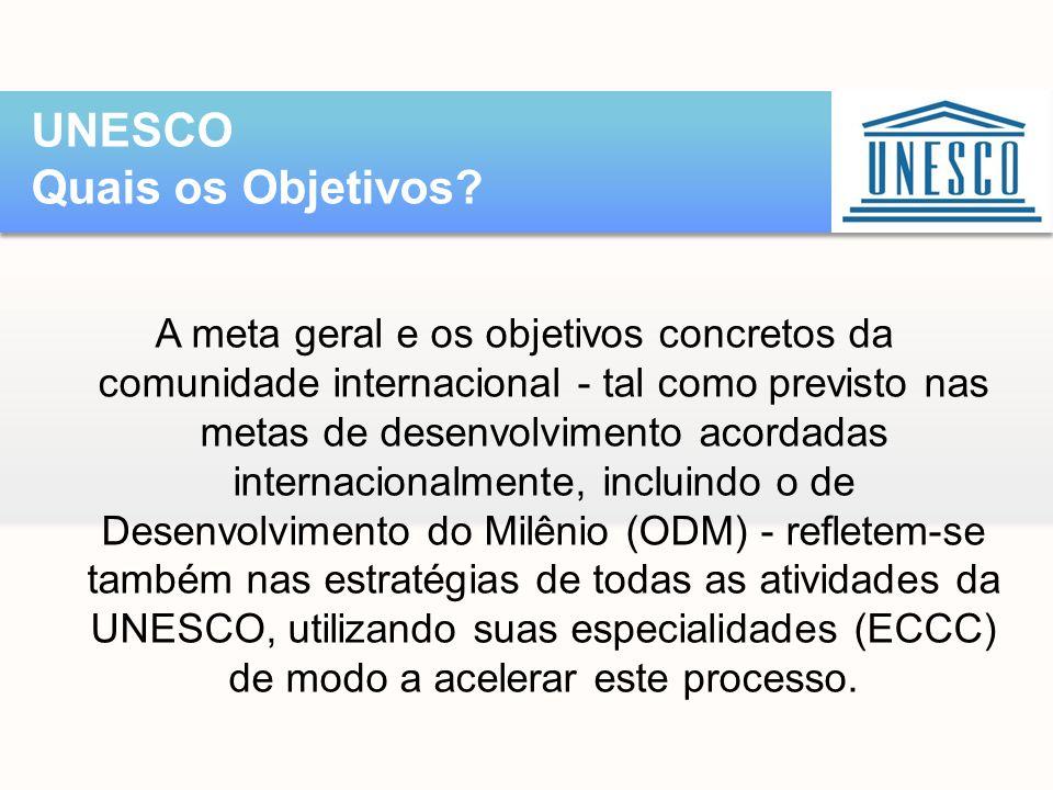 A meta geral e os objetivos concretos da comunidade internacional - tal como previsto nas metas de desenvolvimento acordadas internacionalmente, inclu