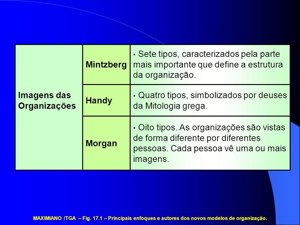 • Oito tipos. As organizações são vistas de forma diferente por diferentes pessoas. Cada pessoa vê uma ou mais imagens. • Quatro tipos, simbolizados p