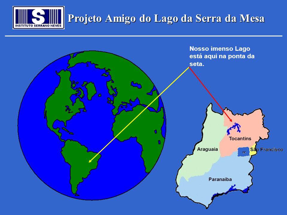 Projeto Amigo do Lago da Serra da Mesa Nosso imenso Lago está aqui na ponta da seta.