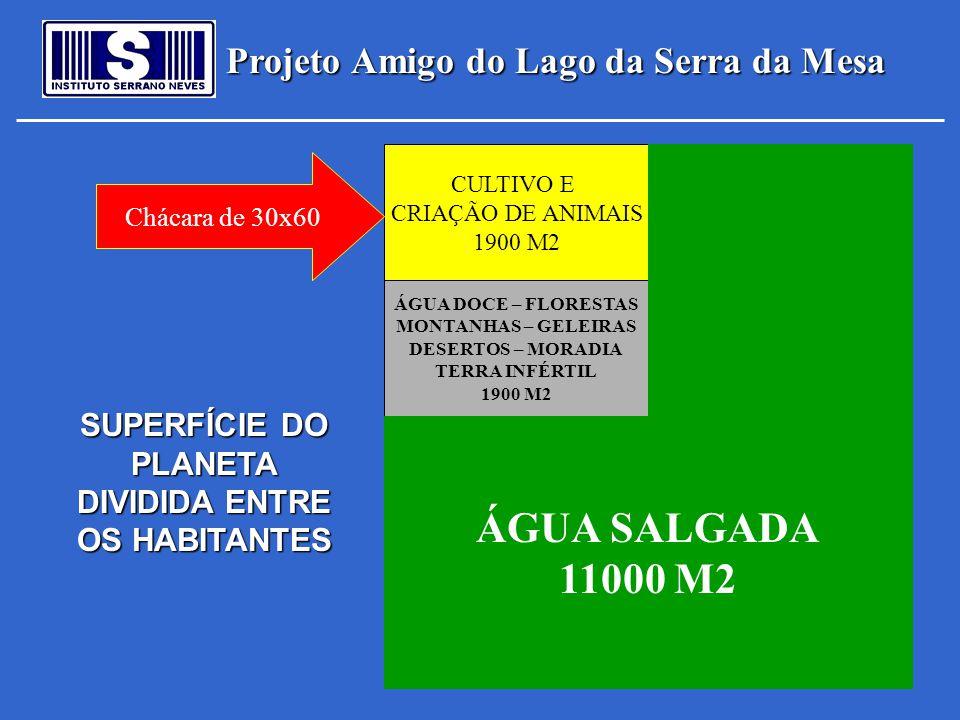 Projeto Amigo do Lago da Serra da Mesa Podemos escolher entre: 1 - Dividir os recursos e dispersar os esforços 2 - Unir os esforços e partilhar os recursos